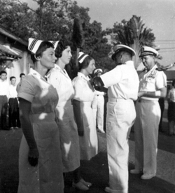 Nurses receiving purple hearts