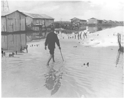 A hamlet elder uses a wood cane to feel his way along one of the walk ways at Binh Hung. The rainy season floods the hamlet and surrounding land, turning it into a sea of mud. But, life goes on as usual.: Douglas Pike Collection: Other Manuscripts - American Friends of Vietnam [VA005624]